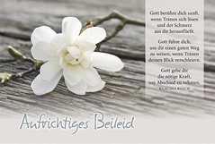 Faltkarte: Gott berühre dich sanft - Trauer